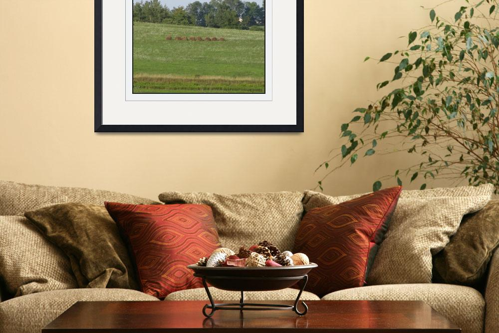"""Wellsboro Pennsylvania Hay Hedgerow Landscape&quot  (2010) by CuriousEye"