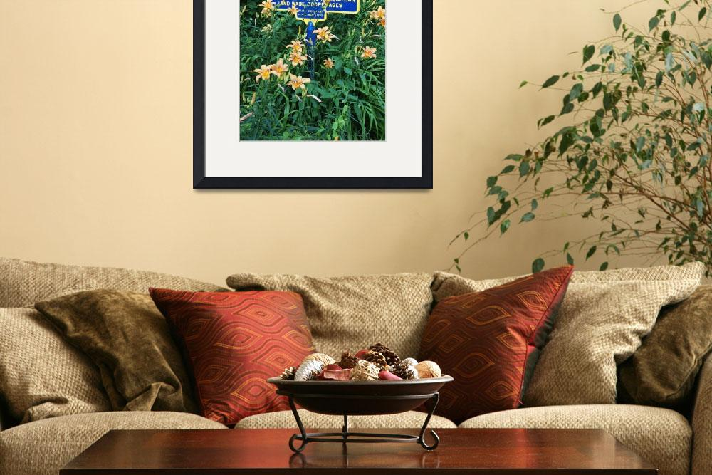 """""""Tiger Lilies and Historic Sign&quot  (2011) by MichaelStephenWills"""