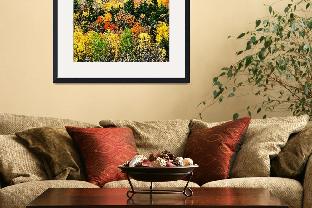 """""""Adirondack Fall Foliage Watercolor&quot  by HodlinGallery"""