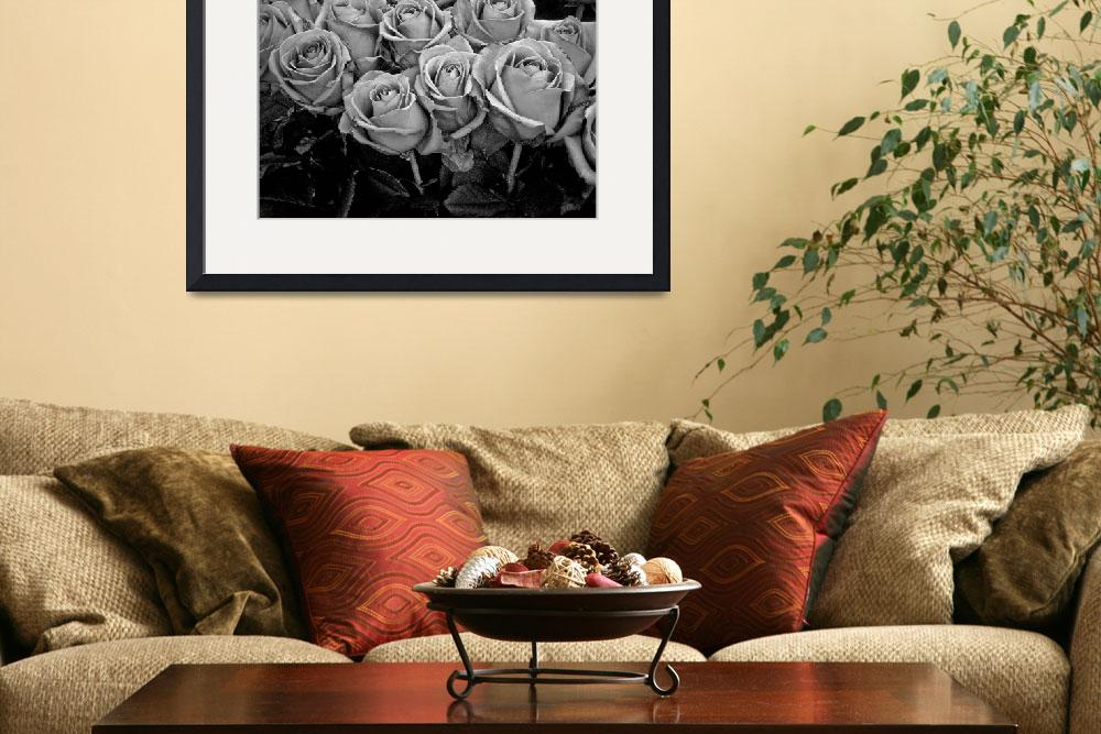 """""""Rose II&quot  (2008) by GenevieveBrown"""