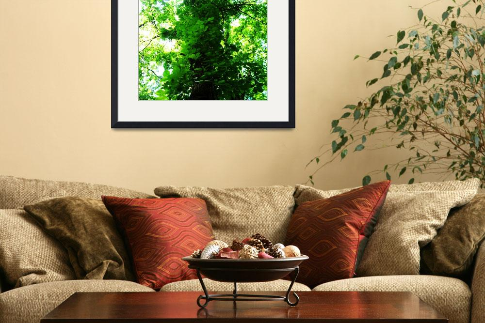 """""""Winding Leaves&quot  (2012) by ShawnaRowe"""