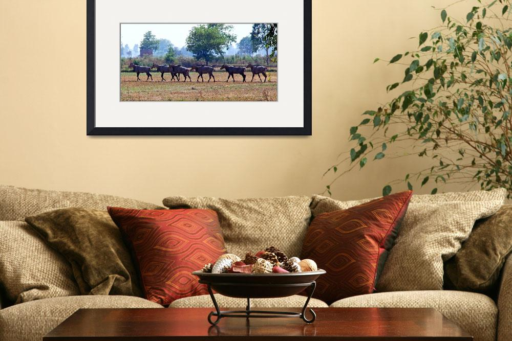 """""""Marching Antelopes&quot  (2009) by pravine"""