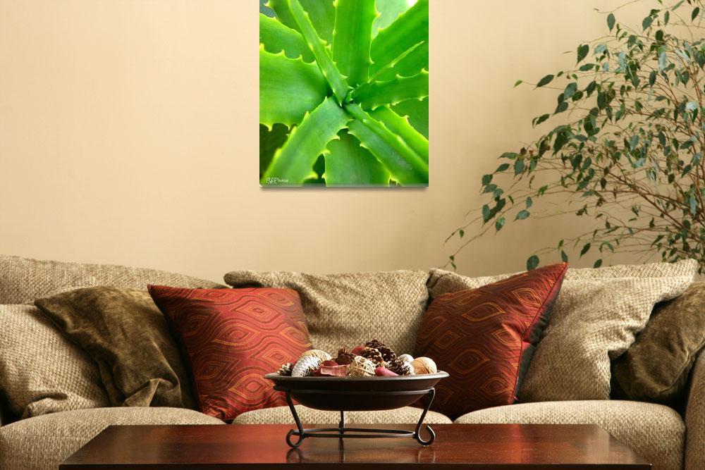 """Overwhelming Green""  by bradfiee"