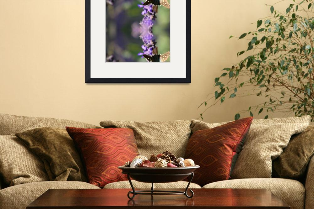 """""""Lavendar and Butterfly&quot  (2008) by nadinerippelmeyer"""