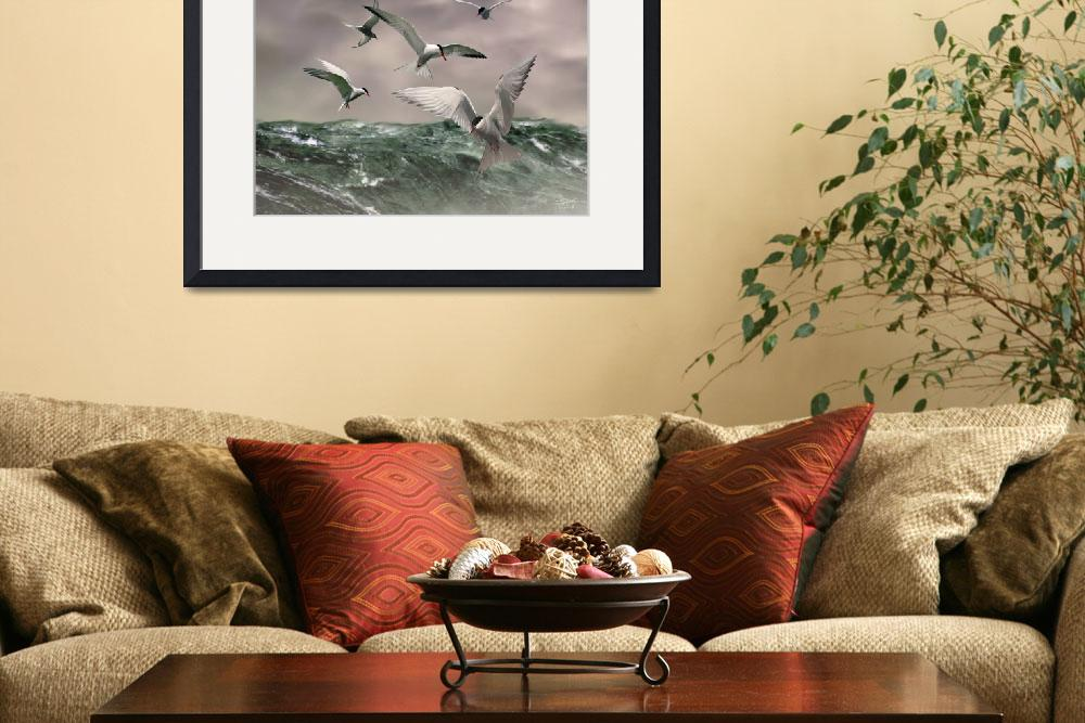 """Arctic Terns at Sea&quot  (2010) by spadecaller"