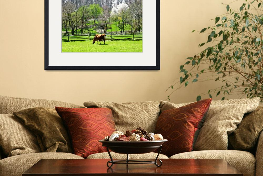 """""""Cow Grazing in Pasture in Spring&quot  by susansartgallery"""