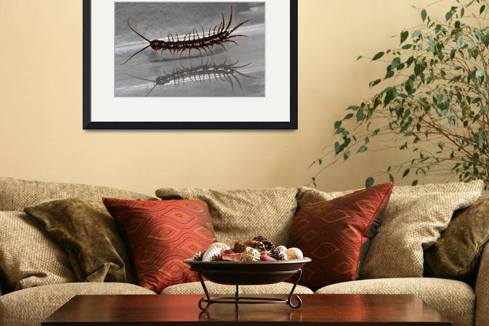 """Pacing Centipede with Reflection""  (2012) by theblueplanet"