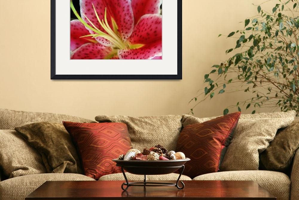 """""""Lily #12&quot  (2008) by LightWorks"""
