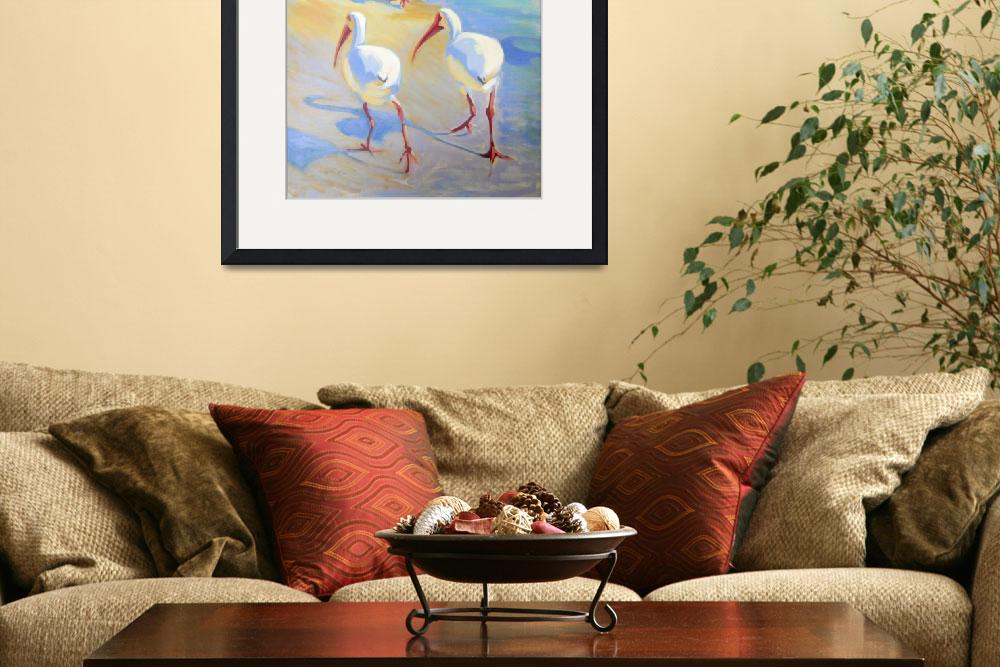 """""""Ibis 2&quot  by rogerwhite"""