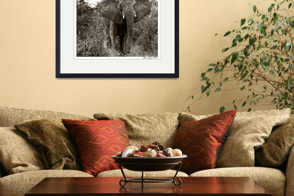 """""""Mama Elephant&quot  (2007) by juliekruger"""