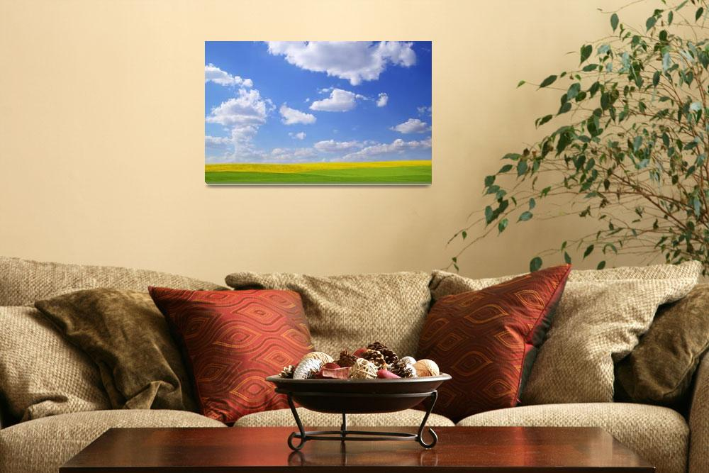 """""""Scenic View Of Meadow And Canola Crop""""  by DesignPics"""