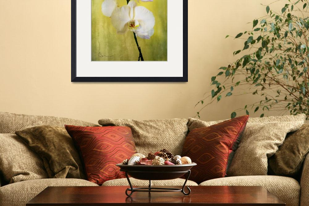 """""""Gold Orchid&quot  by ellsworth"""