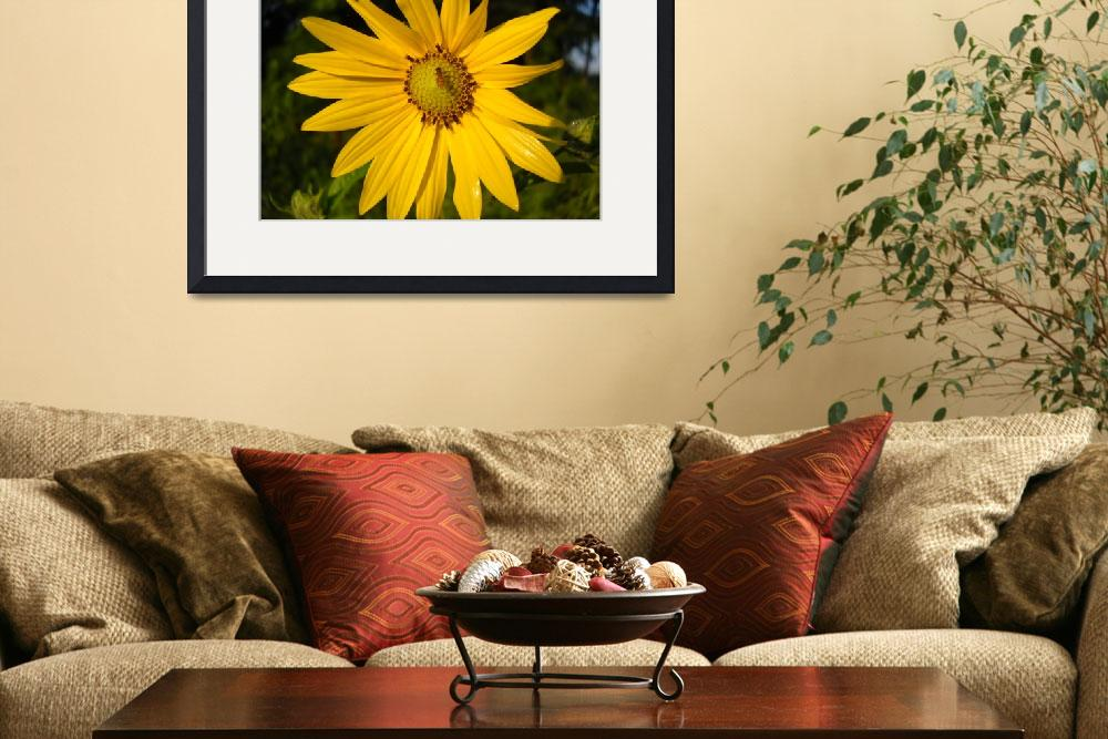"""""""Bee and Yellow Flower&quot  (2010) by niftywares"""
