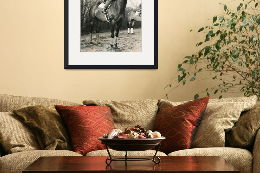 """""""War Admiral Vintage Horse Racing #001&quot  by RetroImagesArchive"""