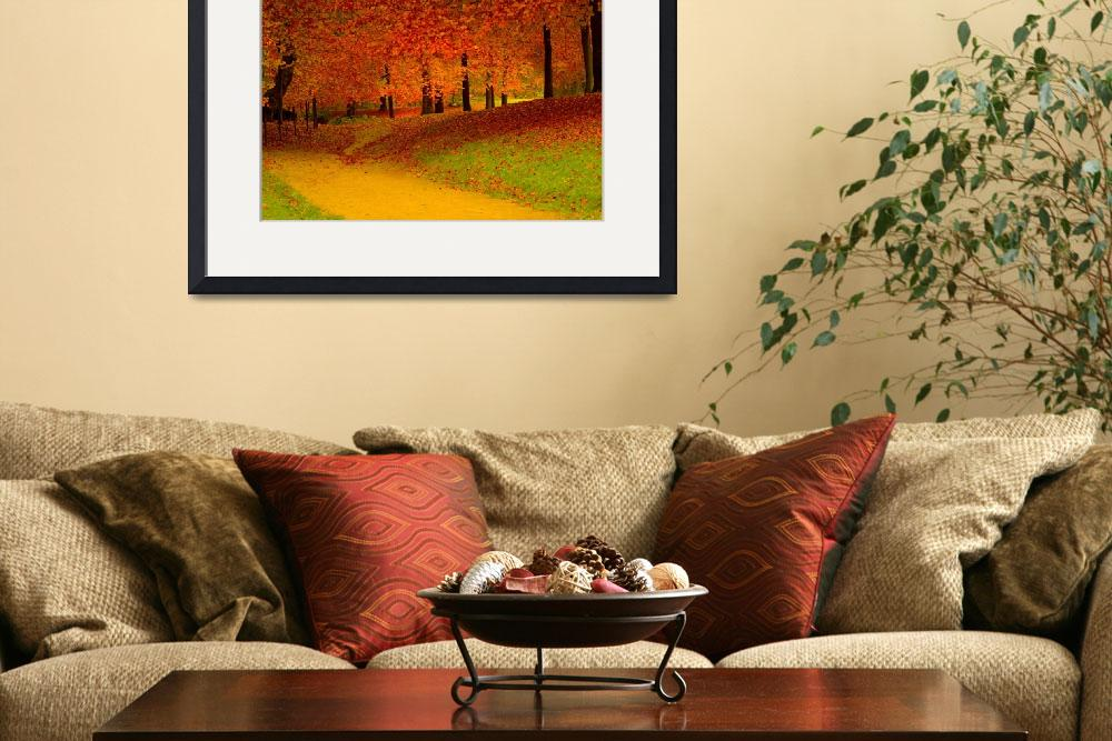 """""""red trees&quot  (2007) by B_Next"""