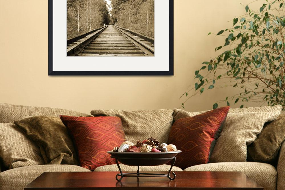 """Deserted Railroad&quot  (2009) by scottcoleson"