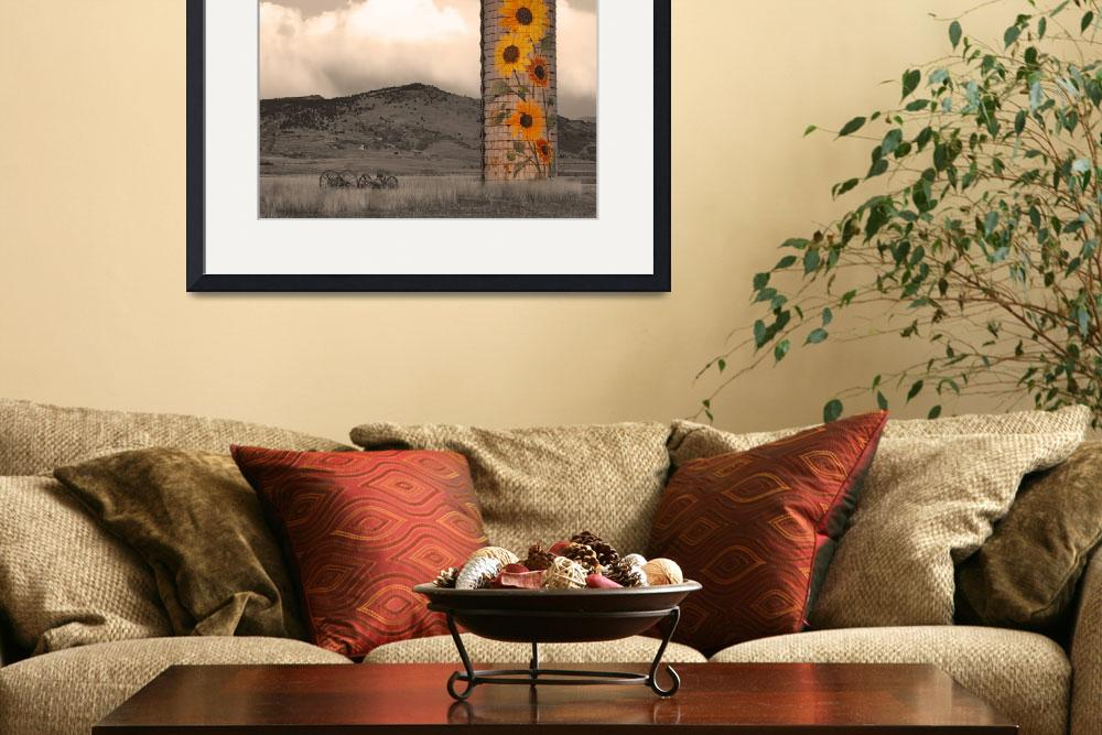 """""""Sunflower Silo in North Boulder County Colorado Se&quot  (2011) by lightningman"""