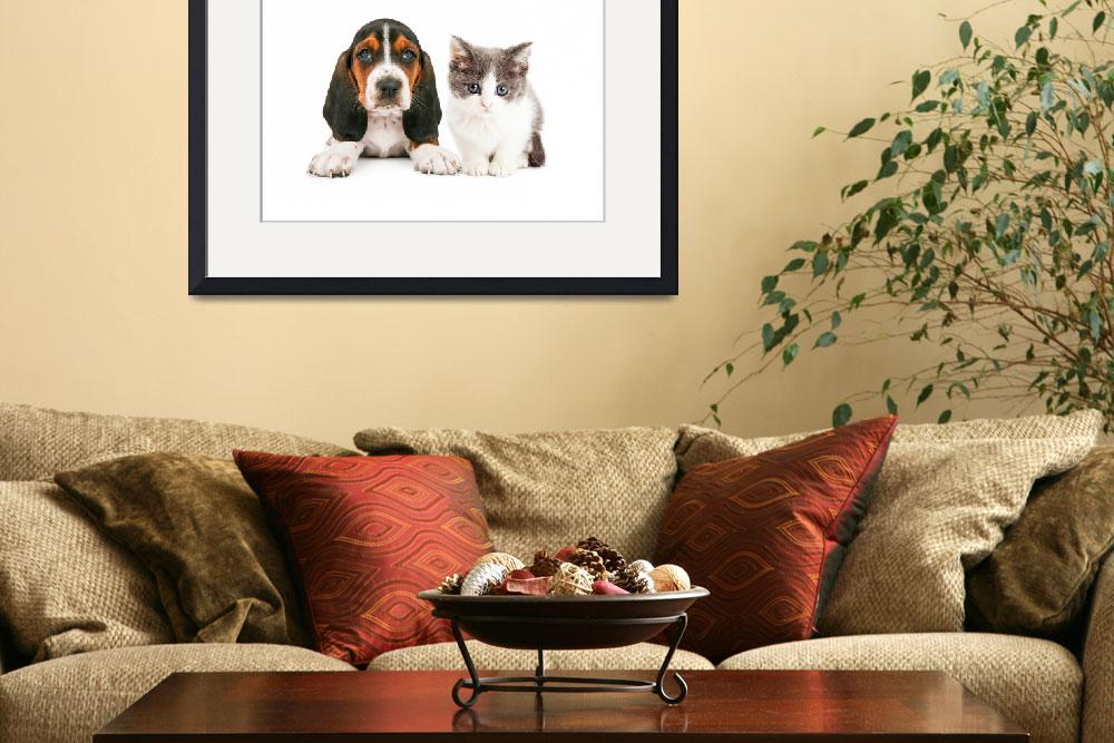 """""""Adorable Basset Hound Puppy and Kitten Sitting&quot  (2016) by ADogsLifePhoto"""