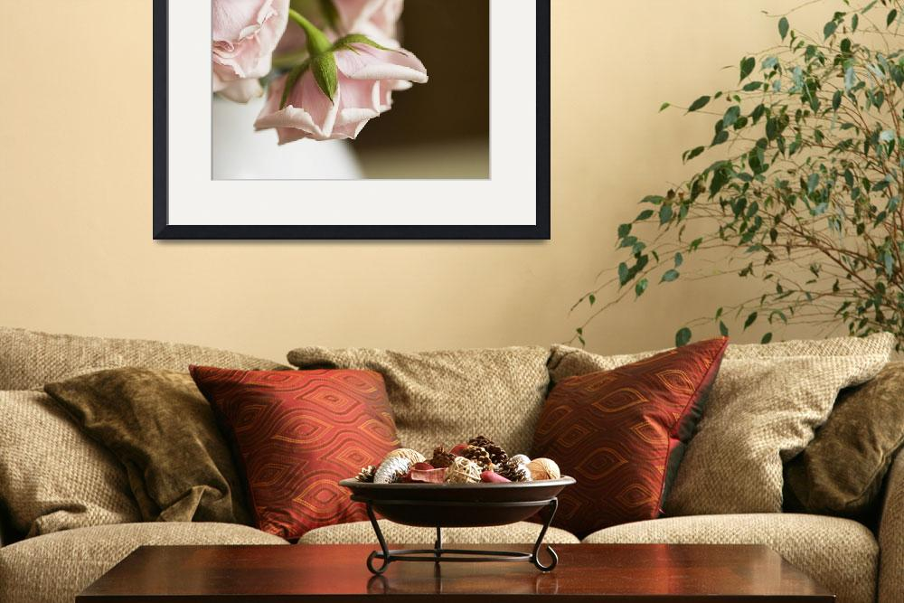 """""""Wilting roses""""  by emilymccallphotography"""