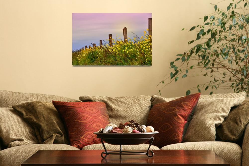 """""""Sunset over the Prairie""""  (2011) by CaptureLife"""
