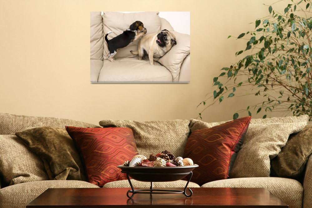"""Beagle Attacking Pug""  (2009) by dosecreative"