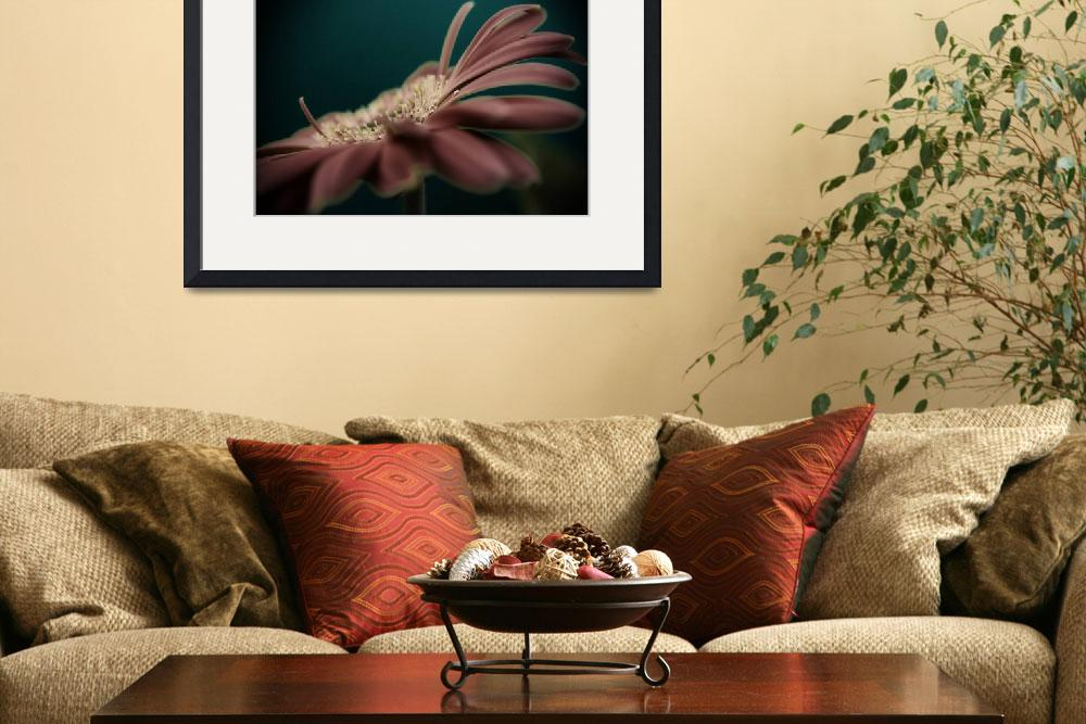 """""""Gerbera&quot  (2008) by divineinthedaily"""