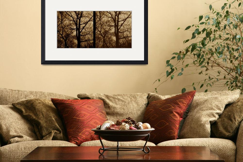 """""""stereo pair trees 3D  black and white photo&quot  (2014) by jnanian"""