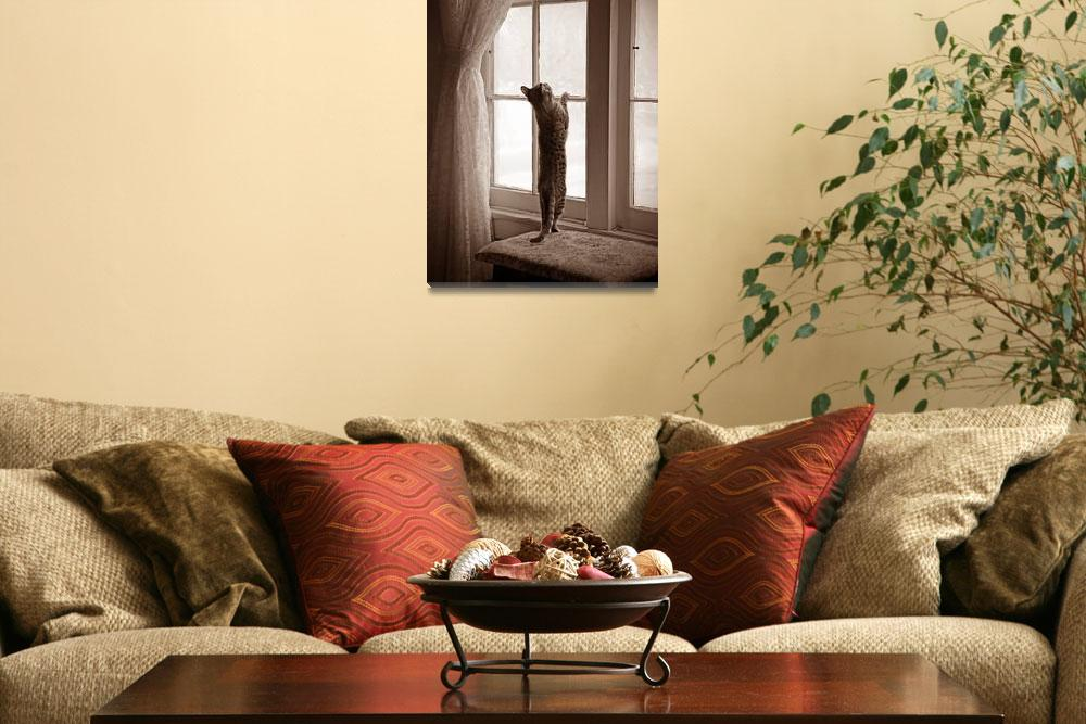 """""""Sepia Daisy Playing in the Window""""  (2012) by daisyjoan"""