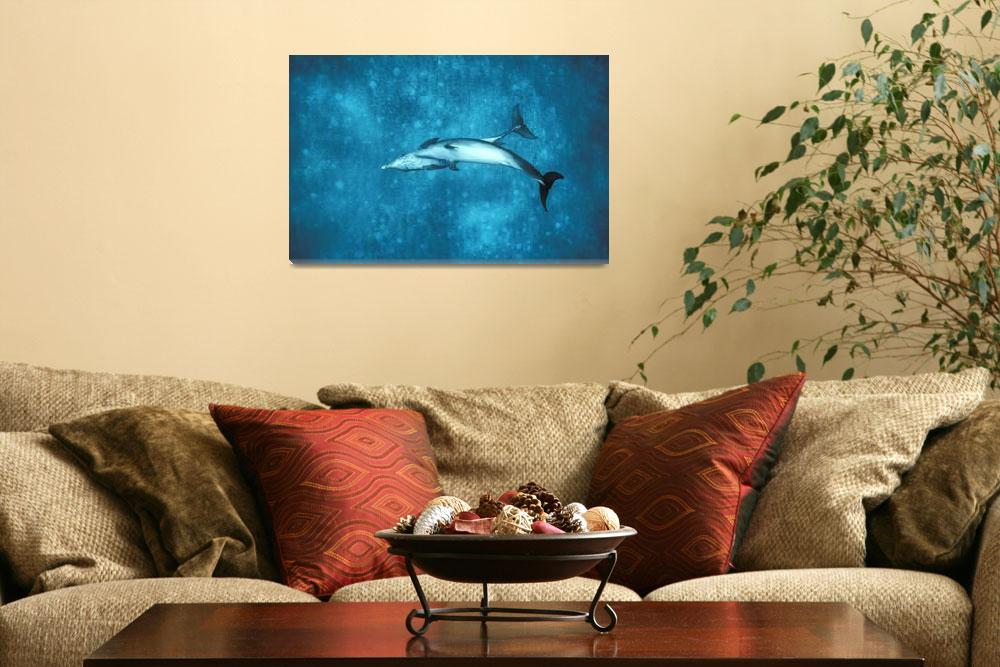 """""""Dolphin w/ Young&quot  by Panoramic_Images"""