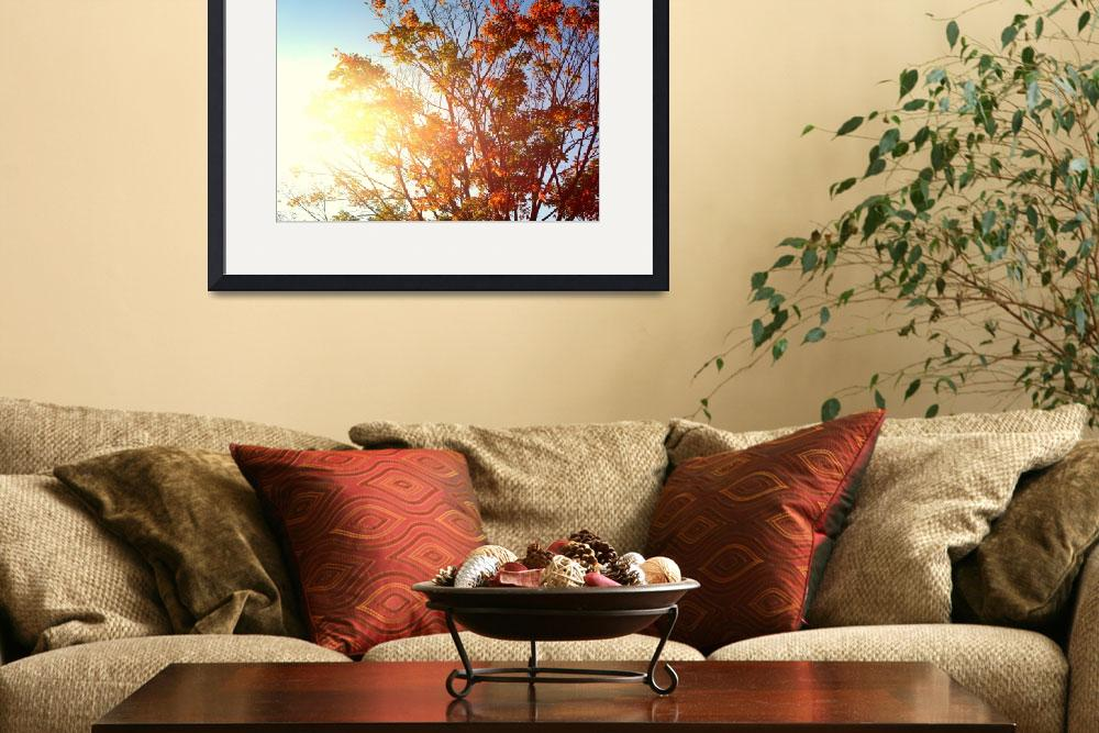 """""""New England Afternoon - Fall""""  by lukeflickr"""