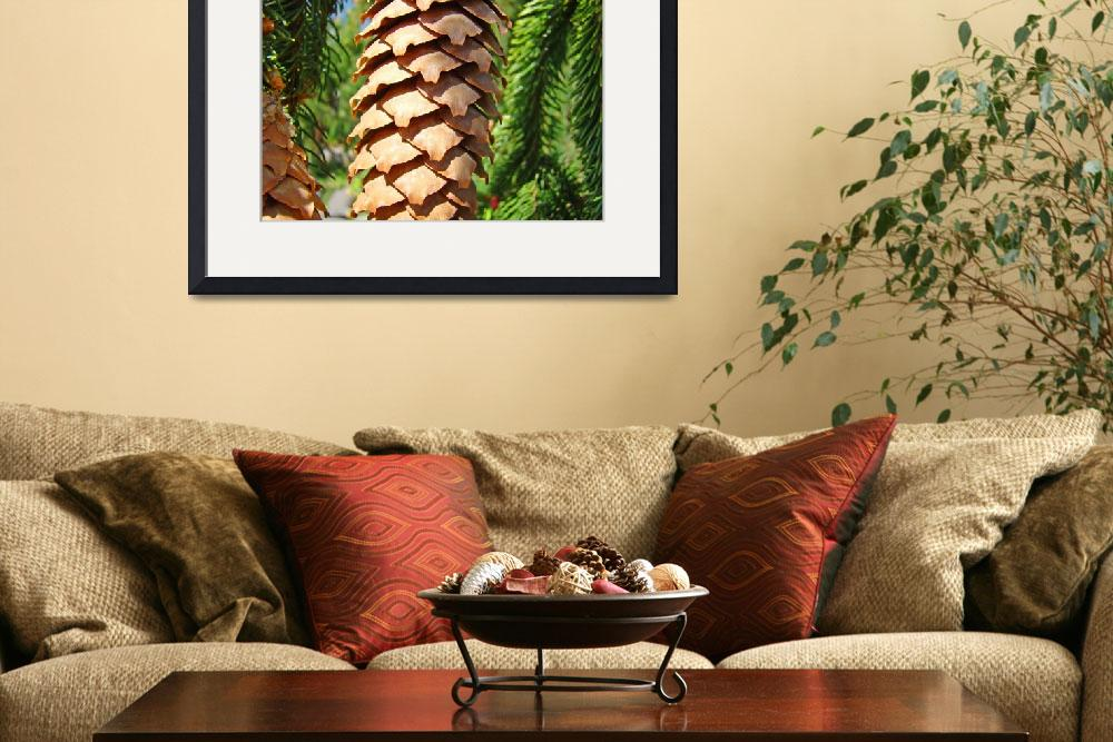 """Golden Pine Cone Fine Art Photography Baslee""  (2010) by BasleeTroutman"