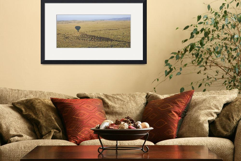 """""""Herd on wild animals migrating&quot  by Panoramic_Images"""