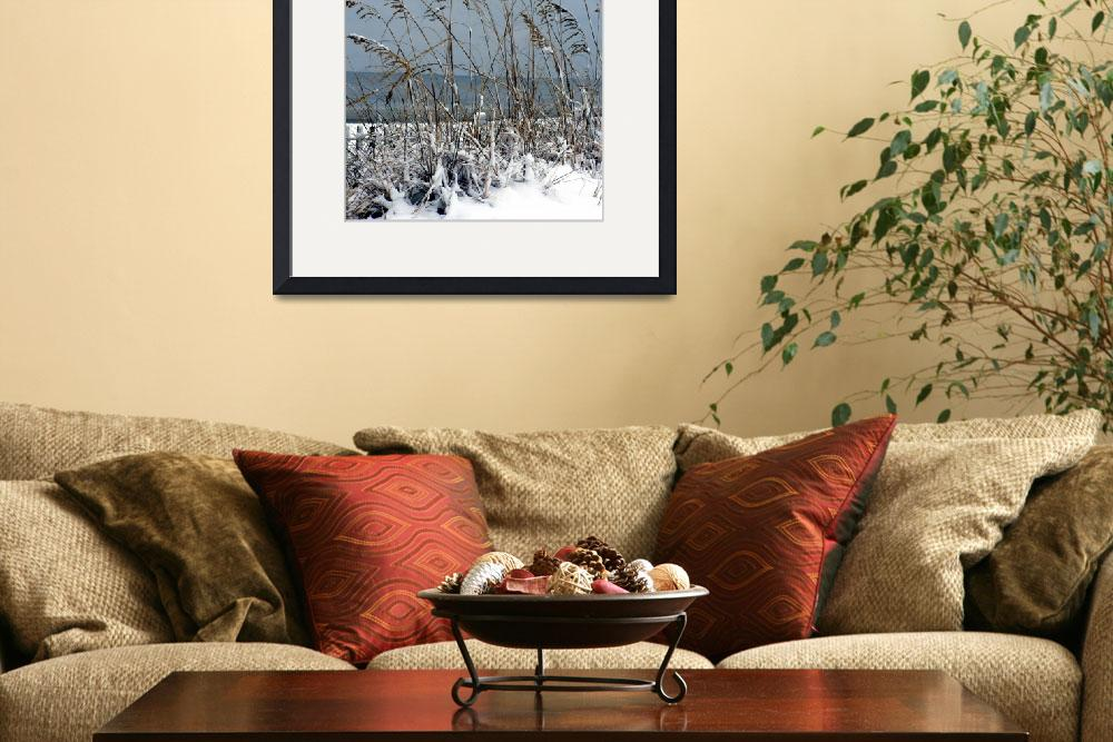 """""""Snow at the Beach""""  (2011) by Happytimesphotography"""