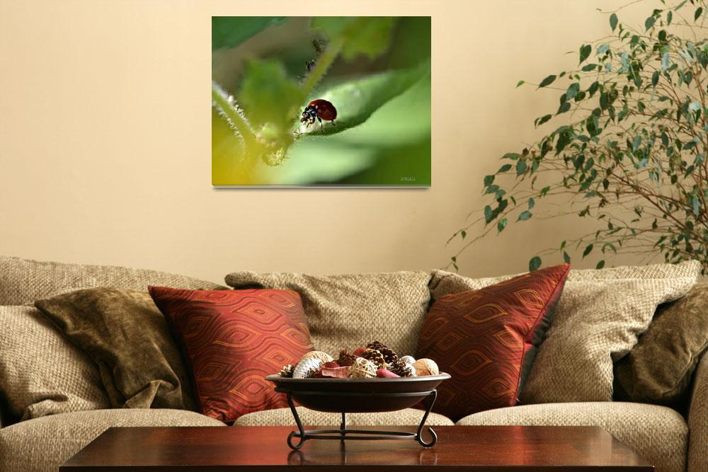 """""""Ladybug with Aphid Treat&quot  (2012) by theblueplanet"""