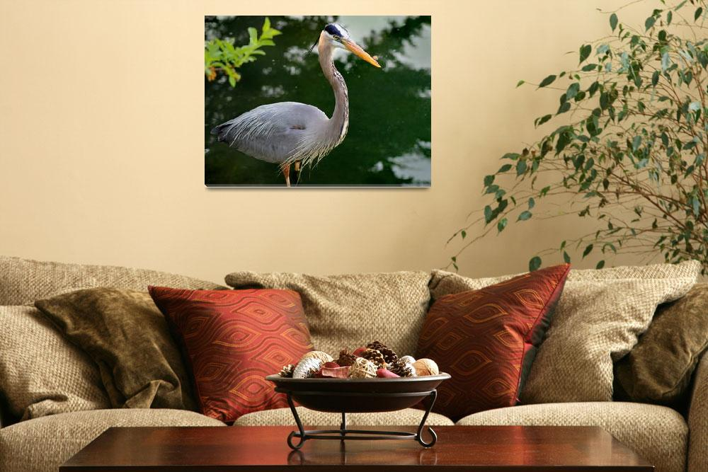 """Great Blue Heron 2016&quot  (2016) by KsWorldArt"