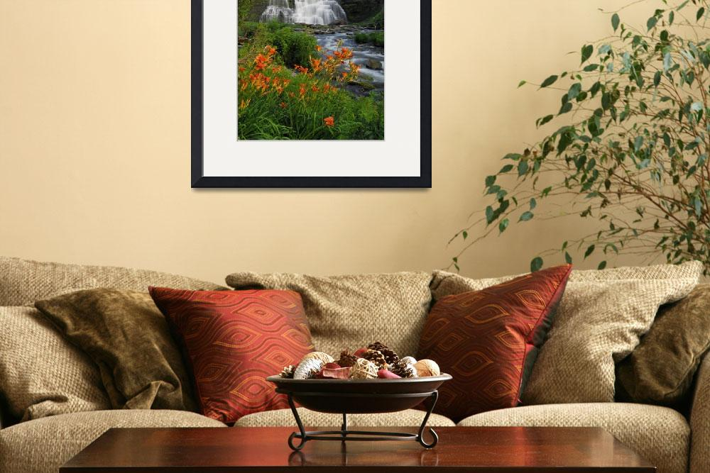 """""""Tiger Lilies and Chittenango Falls""""  (2010) by ChrisMurrayPhotography"""