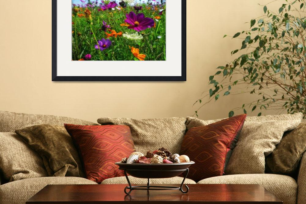 """""""Field of Wild Flowers in Summer&quot  by stefanbungart"""