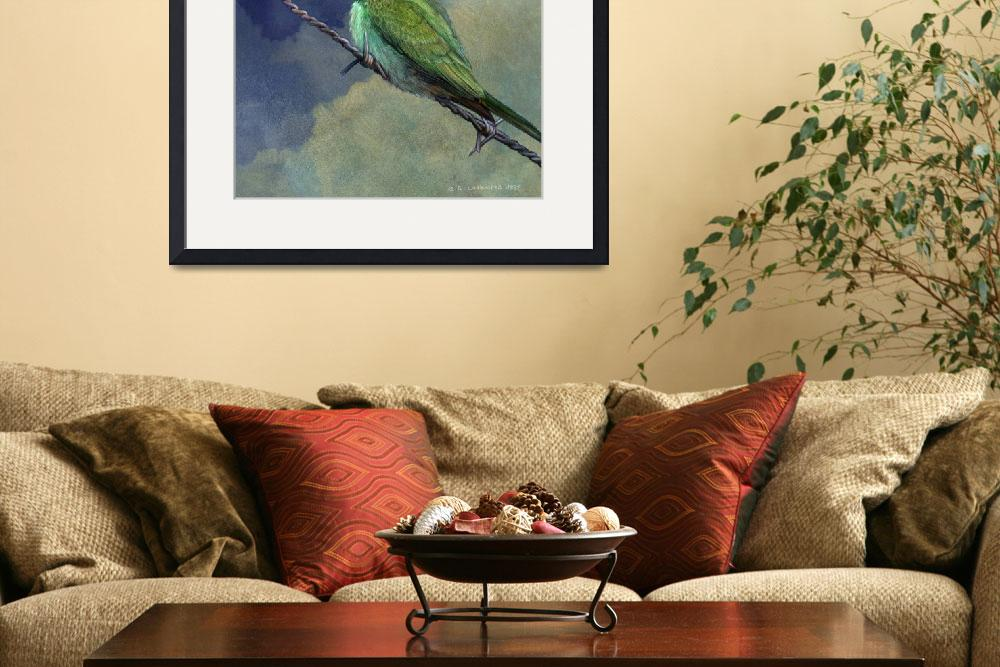 """""""barriers - little green bee eater in israel&quot  (2011) by rchristophervest"""