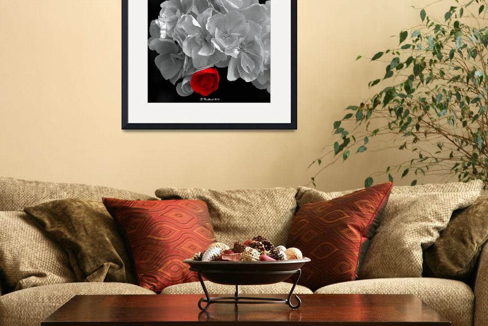 """A Touch Of Red&quot  (2011) by bettynorthcutt"