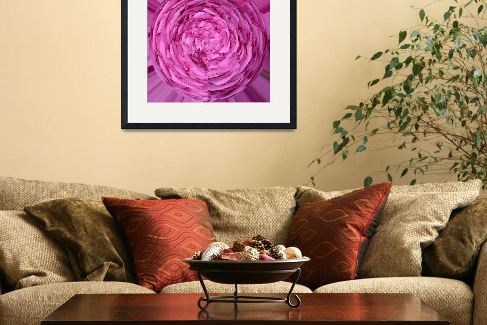 """""""pink flower ball""""  (2010) by oxpix"""