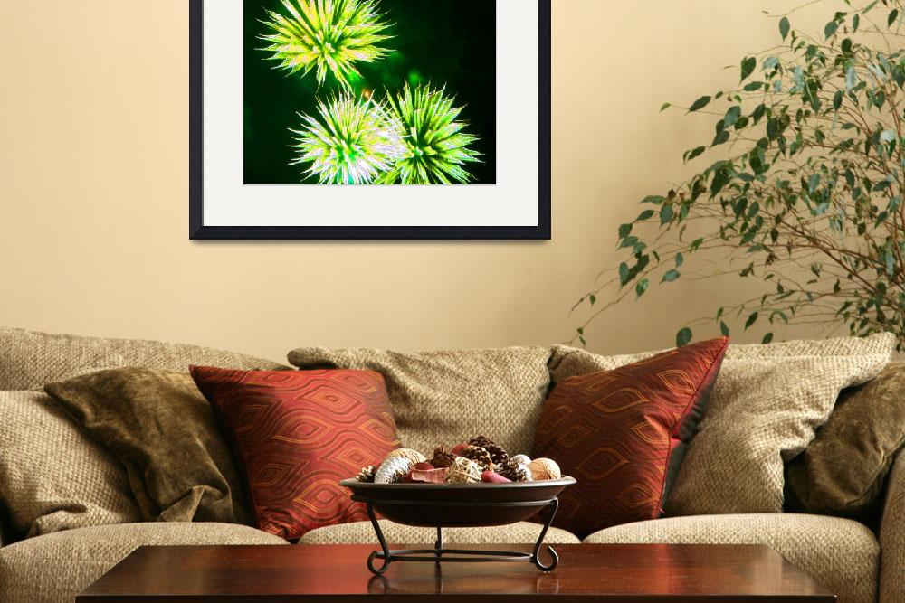 """""""Fire Art Flowers Green&quot  (2011) by thespiritlift"""