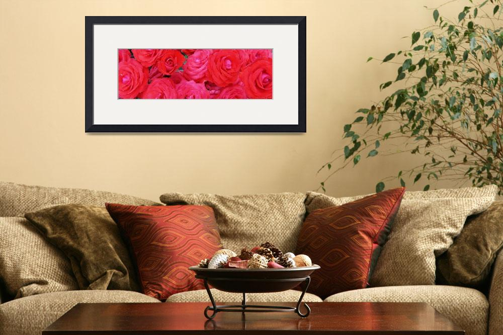 """""""Red Roses - Cropped&quot  (2009) by qubitgfx"""