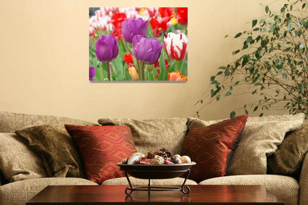 """Tulip Flowers Meadow Art Prints Purple Tulips""  (2014) by BasleeTroutman"