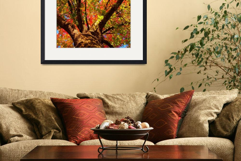 """""""Colorful Autumn Abstract&quot  (2010) by lightningman"""
