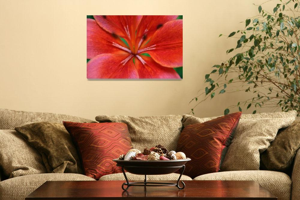 """""""Red Lily""""  by dreamwhisper"""