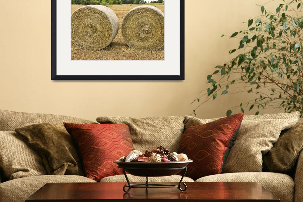 """Two Round Hay Bales&quot  (2011) by lightningman"