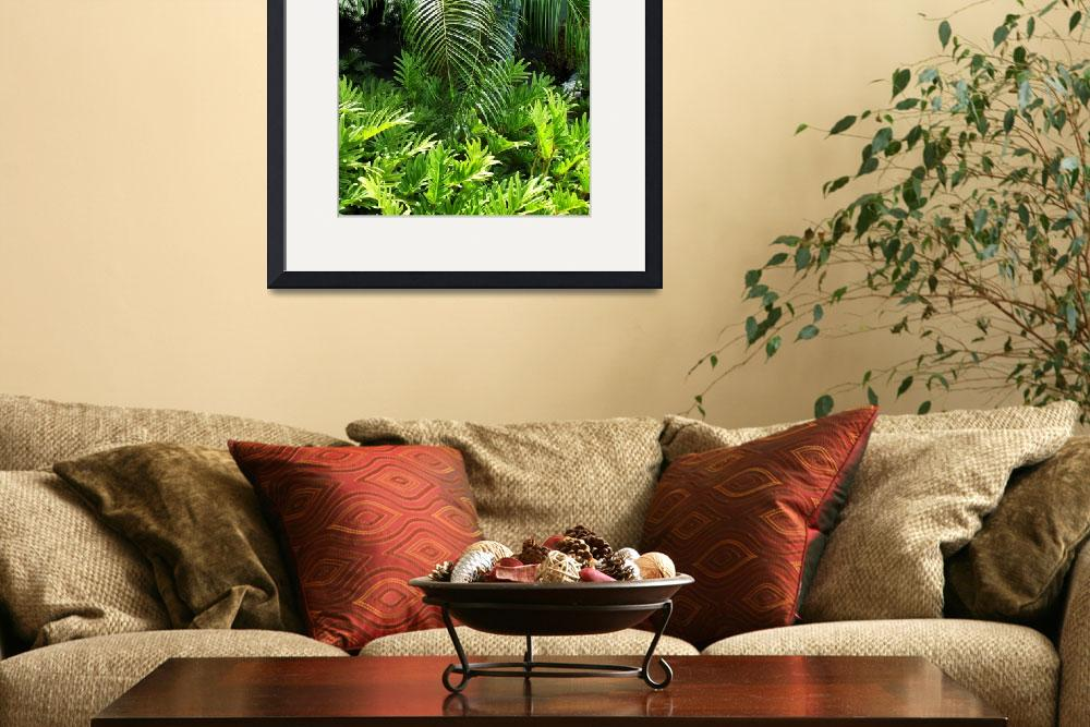 """""""Palms and plants&quot  (2009) by TheMears"""