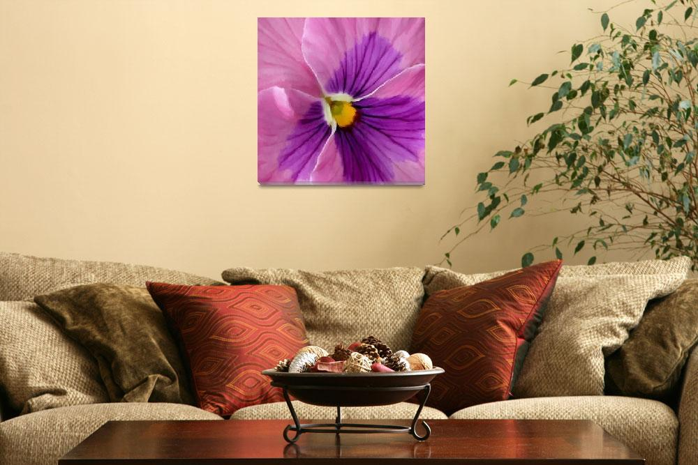 """""""Pink Purple Pansy Flower Macro&quot  (2013) by SaraValor"""