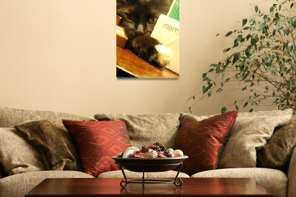 """PeekABoo Kitty""  (2008) by WendyRich"