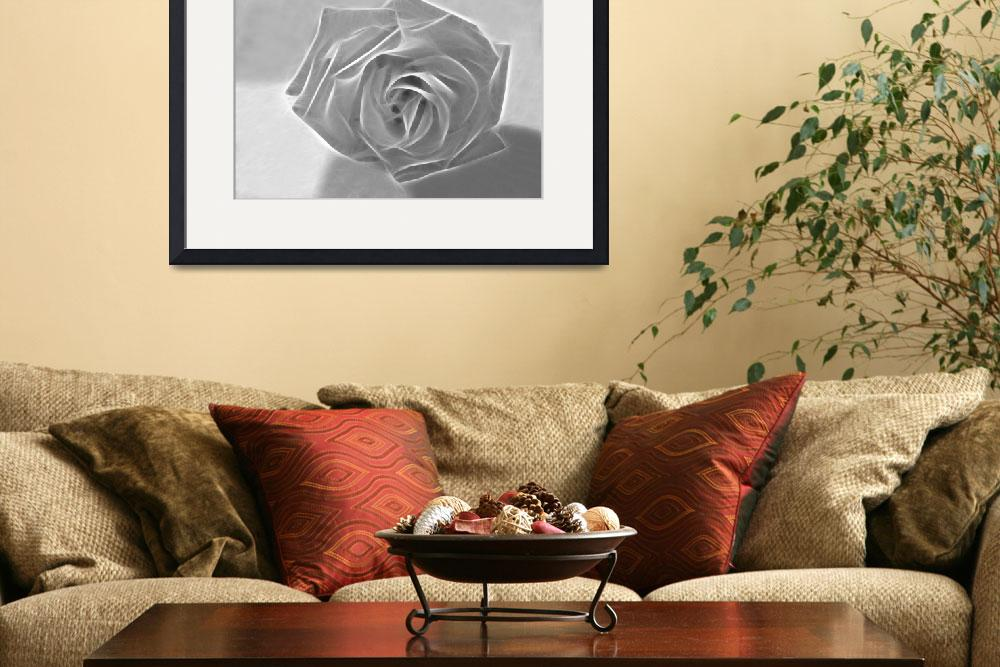 """""""Essence of a Rose 3&quot  (2009) by ChristopherInMexico"""